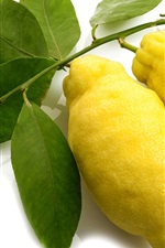 Fresh yellow lemons, white background