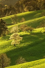 Preview iPhone wallpaper Germany, nature scenery, grass, trees, hills, spring