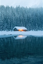Preview iPhone wallpaper House, lake, water, snow, forest, winter
