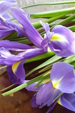 Preview iPhone wallpaper Iris flowers, bouquet