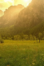 Preview iPhone wallpaper Mountains, trees, grass, morning, fence, sunshine