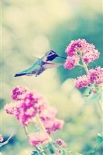 Preview iPhone wallpaper Pink flowers, hummingbird, bokeh