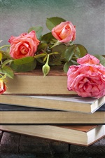 Preview iPhone wallpaper Pink rose, books, still life