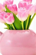 Pink tulips, vase, white background