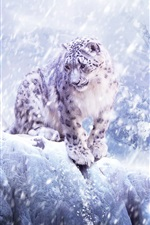 Preview iPhone wallpaper Snow leopard, blizzard, winter