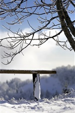 Preview iPhone wallpaper Snow, tree, bench, winter