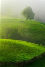 Preview iPhone wallpaper Spring, greens, hills, trees, fence