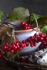 Preview iPhone wallpaper Still life, red berries, mushrooms, boletus