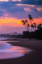 Preview iPhone wallpaper Sunset, sea, beach, palm trees, red sky