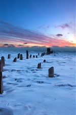 Preview iPhone wallpaper Sunset, snow, winter, stump