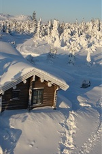 Thick snow, house, trees, winter