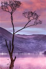 Preview iPhone wallpaper Tree, grass, lake, mountains, dusk