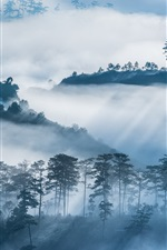 Preview iPhone wallpaper Trees, mountains, village, fog, morning