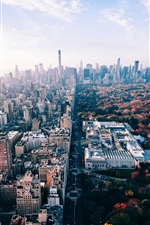 Preview iPhone wallpaper USA, New York, park, trees, city, autumn