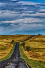 Preview iPhone wallpaper USA, nature, road, fields, grass, hills