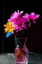 미리보기 iPhone 배경 화면 꽃병, 분홍색과 노란색 꽃