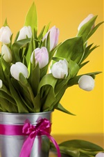 Preview iPhone wallpaper White tulips, bouquet