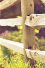 Preview iPhone wallpaper Wood fence, grass, flowers, blurry