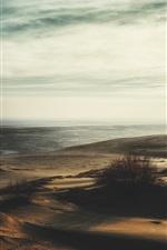 Beach, grass, sea, dusk
