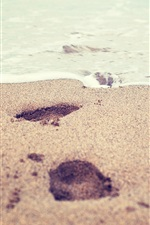 Preview iPhone wallpaper Beach, sea, foams, sands, footprints