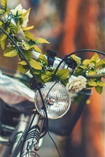 Preview iPhone wallpaper Bike front view, flowers, blurry background