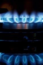 Blue fire, flame, stove, burner