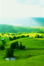 Blurry photography, green hills, houses, trees