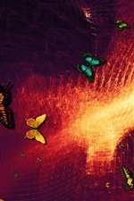 Butterfly, abstract background, design