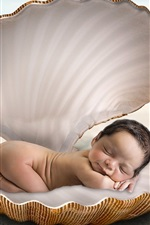 Cute baby sleep in shell