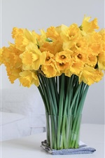 Preview iPhone wallpaper Daffodils, yellow flowers, home, table, sofa