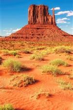 Aperçu iPhone fond d'écranDésert, roches, montagnes, herbe, USA, Arizona