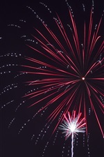 Preview iPhone wallpaper Fireworks, holiday, night, beautiful sky