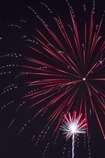Fogos de artifício, feriado, noite, belo céu