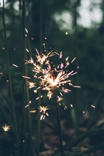Preview iPhone wallpaper Fireworks, sparks, grass, night