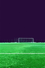 Football field, lawn, lights