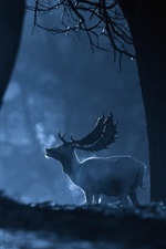 Preview iPhone wallpaper Forest, night, deer, cold