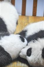 Preview iPhone wallpaper Furry panda cubs sleep