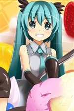 Hatsune Miku, duas encantadoras meninas de anime