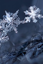 Preview iPhone wallpaper Ice crystal, snowflakes, winter