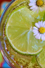 Preview iPhone wallpaper Lemon cocktail, chamomile, summer drinks