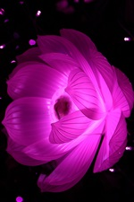 Preview iPhone wallpaper Lotus light, night, abstract