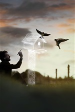 Preview iPhone wallpaper Man painting a birdhouse, birds