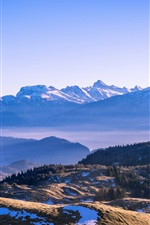 Preview iPhone wallpaper Mountains, snow, trees, blue sky