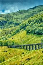 Mountains, trees, grass, railway, bridge, green