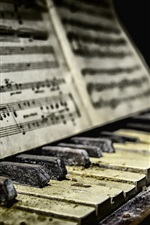 Piano, sheet music, dirt