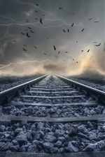Preview iPhone wallpaper Railroad, clouds, lightning, birds