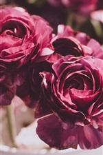 Red peony, vase, blurry