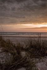 Mar, praia, grama, nuvens, pôr do sol