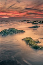 Preview iPhone wallpaper Sea, stones, moss, dawn, clouds, sunrise