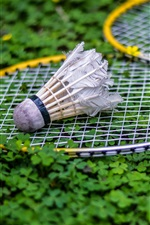 Preview iPhone wallpaper Shuttlecock, racket, grass